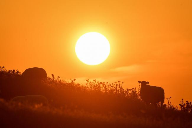 The sun rises over Burton Dassett Hills in Southam, Warwickshire. Picture: Jacob King/PA Wire