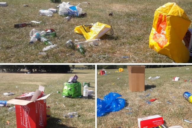 Waste at Danson Park earlier this year. Image: Cllr Peter Craske
