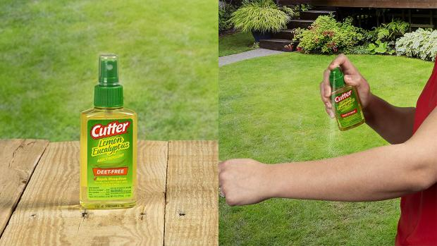 News Shopper: Ditch the horrible smelling insect repellents for one that's fragrant and offers up to six hours of protection. Credit: Cutter