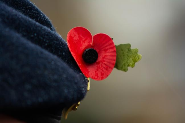 Remembrance services will be held across South London and the UK ahead of Armistice Day on November 11.