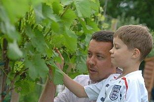 Paul Olding at the vineyard with son Huw