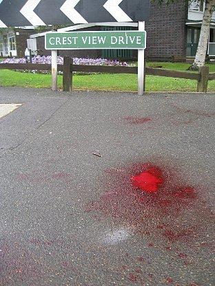 The pool of blood is near the street sign