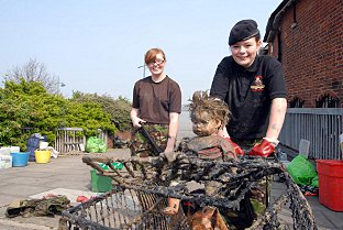 ERITH: Clean-up is first event for new community group