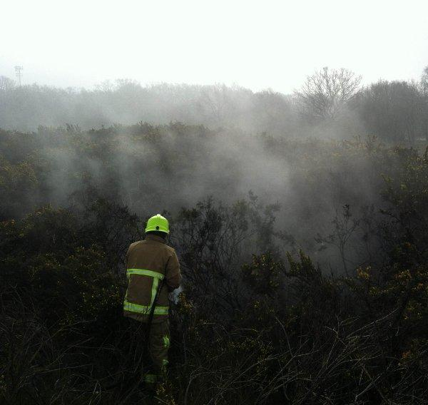 Firefighters tackle a previous blaze on the heath.