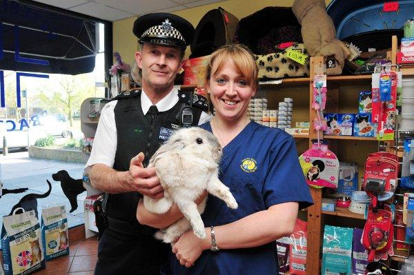 Acting Police Sergeant Terry Meegan with vet nurse Kate Theobald and the rabbit