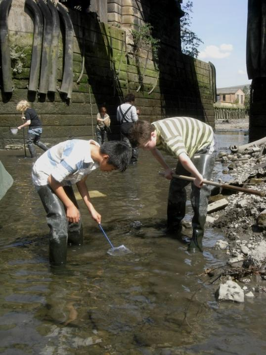 News Shopper: Fish for crabs at Deptford Creek this half term