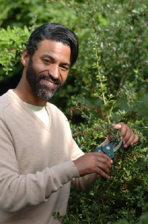 Autumn gardening tips from Sammy Davis Jr in his new column That Old Green Magic
