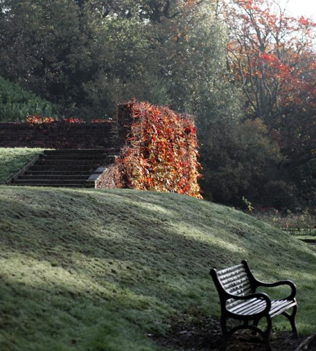 Stunning autumnal snapshots celebrate the beauty of nature around Greenwich