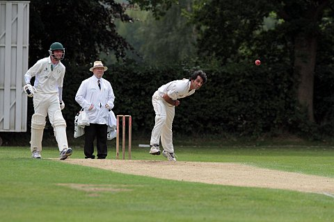 Cricket umpire course to take place in Eltham