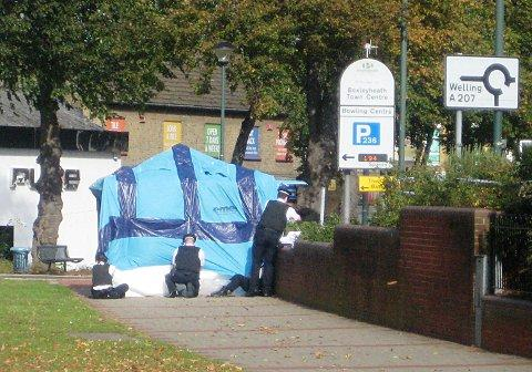 Bexleyheath knife murder: Woman 'wrestled knife' from Nicola Edgington