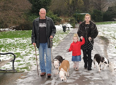 Loretta and Scott Mitchell with their two-year-old daughter Sydnee and their dogs, Stanley, Nancy and Molly BE73546