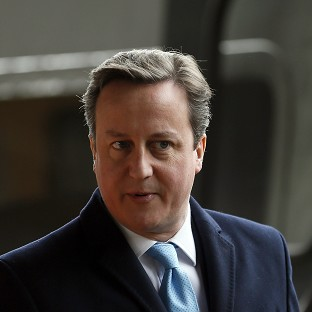 David Cameron is facing opposition from Tory MPs