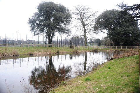 News Shopper: Princes Park