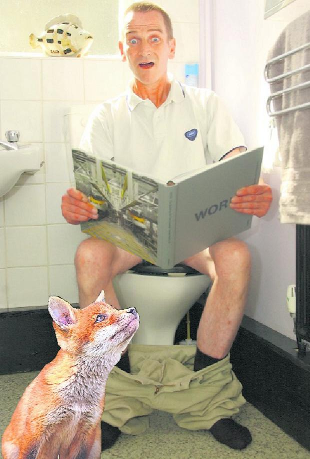 News Shopper: Anthony Schofield says he was attacked by a fox which burst in on him as he sat on the toilet