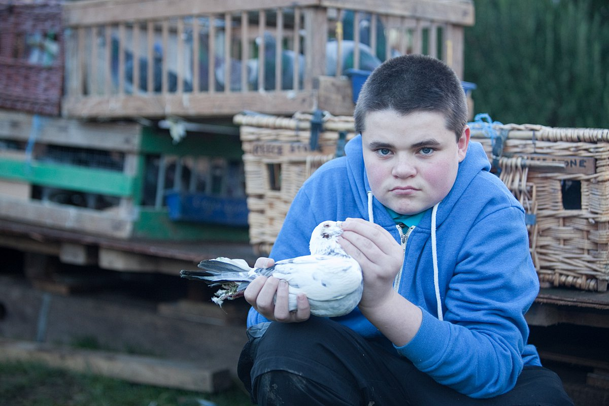 Teenaged pigeon-racer in tears after Gravesham Council bird shed ruling