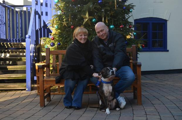 News Shopper: Three-legged staffie star adopted by Erith couple after schmoozing with Michael Bublé