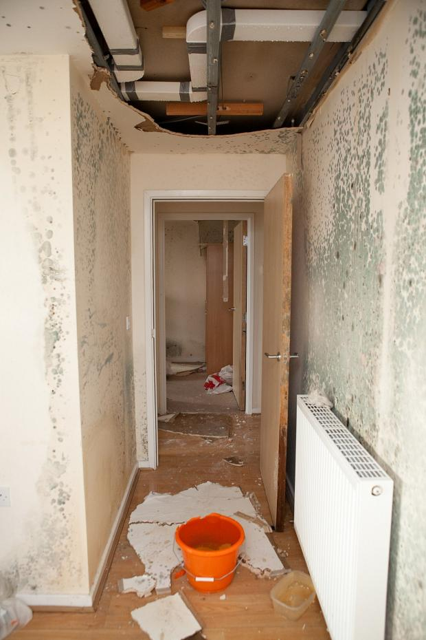 News Shopper: Orpington nurse 'homeless' since Christmas after roof collapsed and forced to leave 'dangerous' damp flat