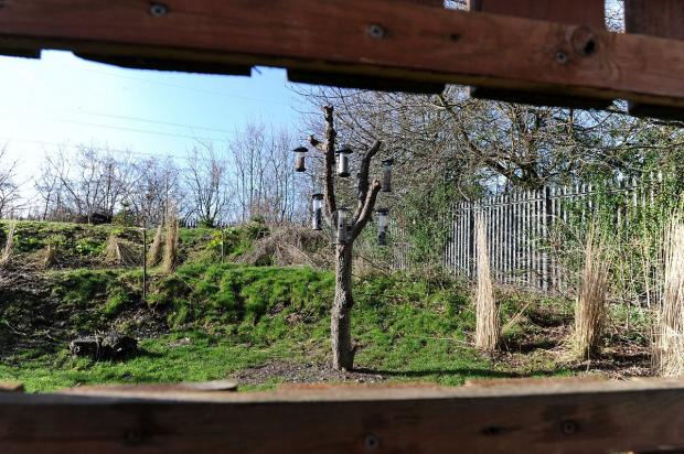 News Shopper: Take a flight of fancy to artistic new bird hide at Millbrook Garden Centre