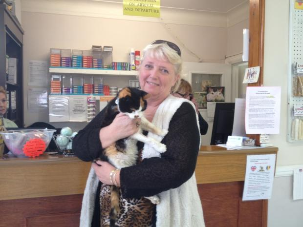 Nicola Fairweather with Gladys Knight - the oldest cat at the surgery who was one left distressed by the burglary