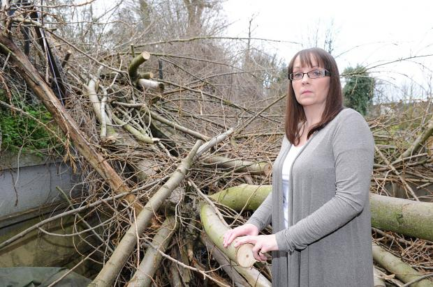 News Shopper: Charlton mum says 'please clear the 60 foot tree from my house and garden'
