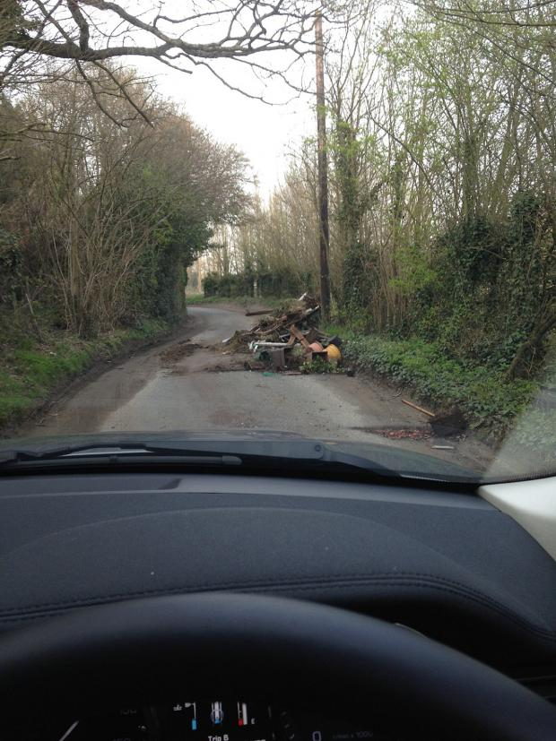 News Shopper: Maria Conroy says she often sees rubbish dumped along Sheepcote Lane, St Mary Cray