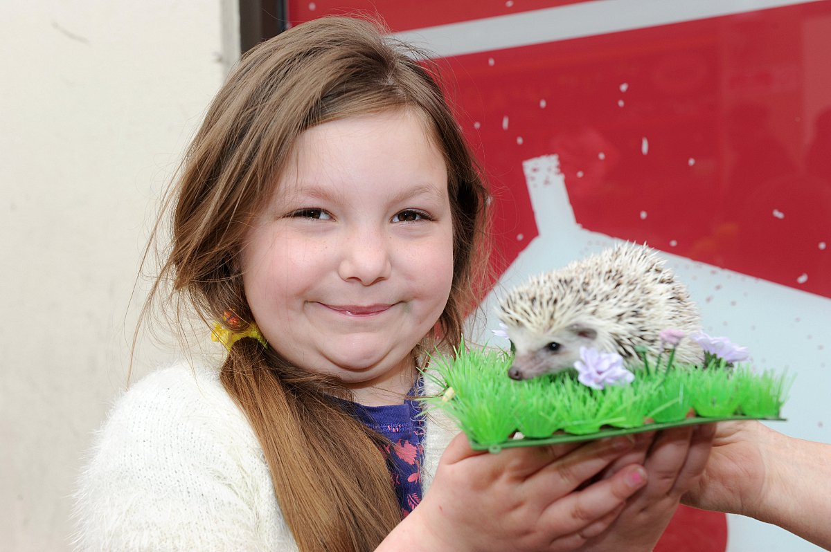 PICTURED: Hedgehogs, chicks and rabbits bring Easter delight to Erith shoppers