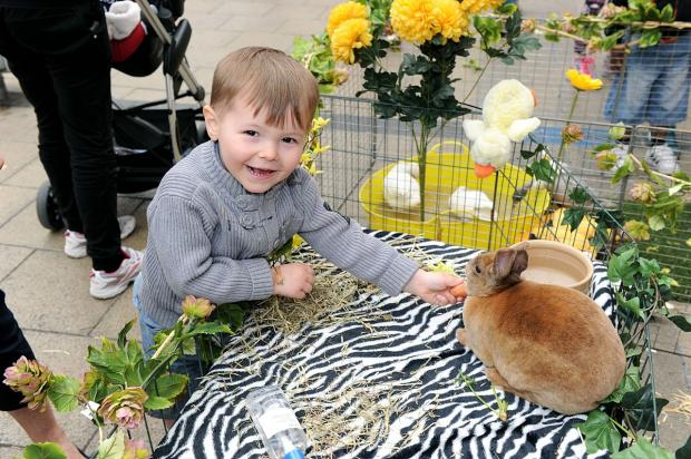 News Shopper: PICTURED: Easter delight at Erith Riverside Shopping Centre with hedgehogs