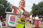 Community-Loving Volunteers Sought For Crystal Palace Festival
