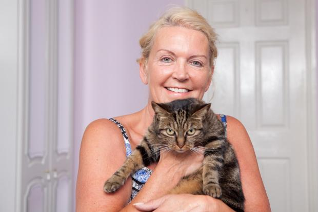 "News Shopper: Bullet-ridden moggy keeps leg following the ""most horrific"" case Welling vet has seen"
