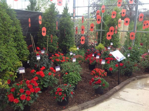 News Shopper: Garden centre remembers the war
