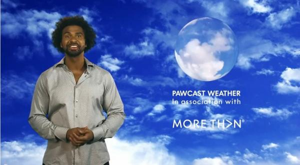 VIDEO: Keston boxing champion David Haye presents the weather - for dogs