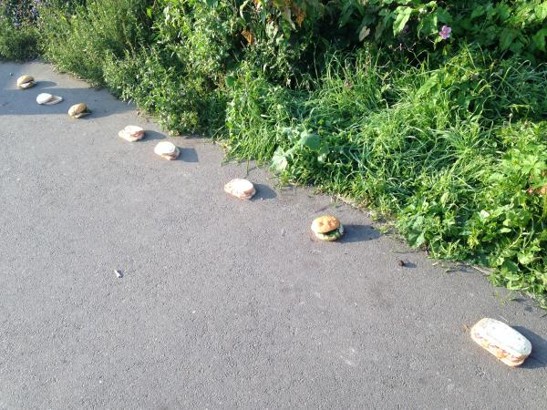 http://www.newsshopper.co.uk/news/11467269.Mysterious_trail_of_sandwiches_found_in_Brockley/