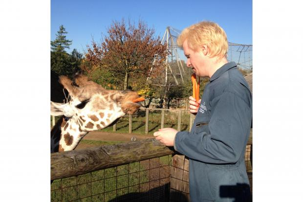 Feeding the giraffes at London Zoo is one of the highlights during the keeper for a day experience