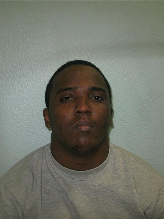 Daniel Elliott, from Anerley, was jailed for life after horrific ...