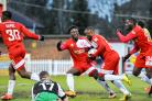 Team mates celebrate Sahr Kabba's equaliser. Pictures by Dave Budden