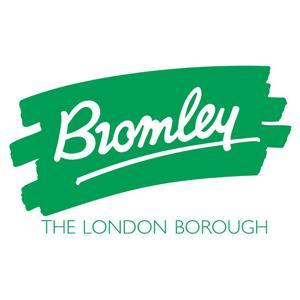 Bromley children's safeguarding board gets new chairman after damning report