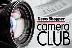Join News Shopper's Camera Club to get your photos published, chat with other photographers, enter our competitions and more.