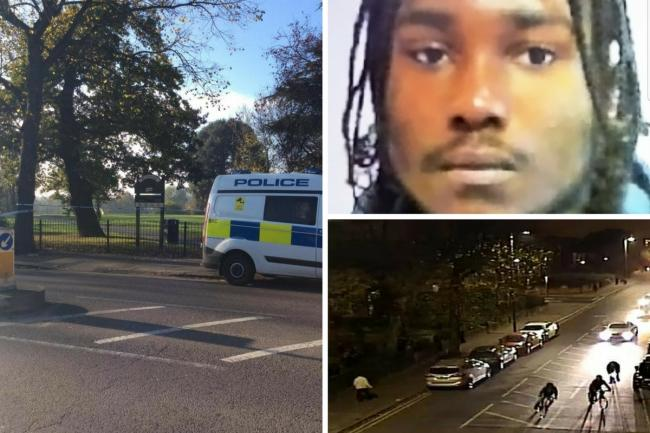 Michael Jonas was killed in Penge Park in November last year