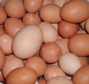 News Shopper: Shopkeepers ban youngsters from buying eggs