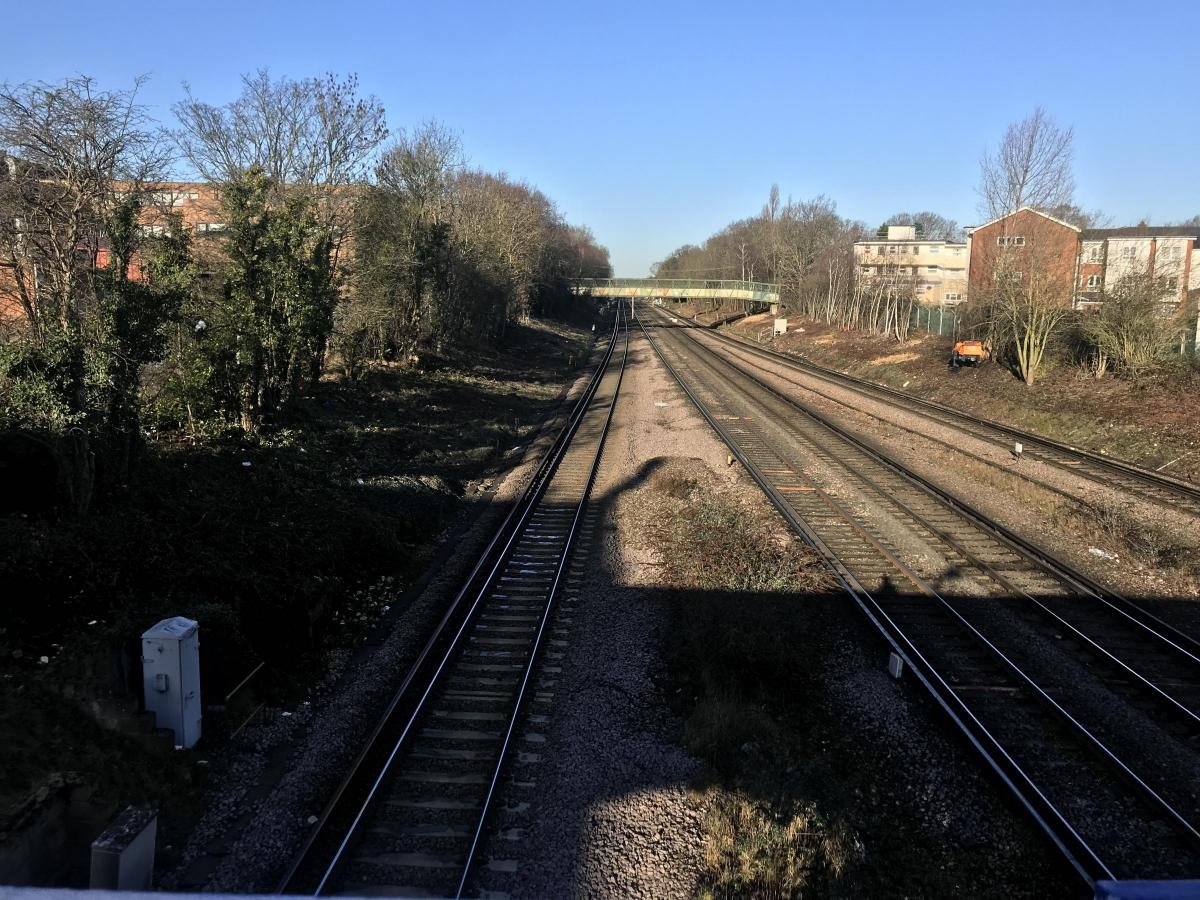 Network Rail Says Chopping Trees By Petts Wood Train Tracks