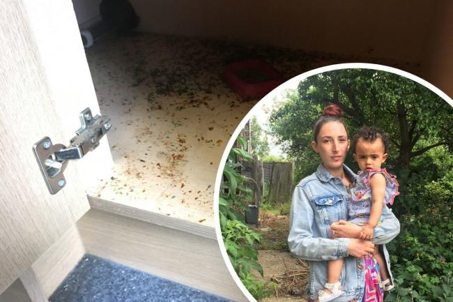 Brooke and Desire (inset) have been living in a mouse-infested house for seven months.